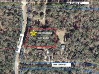 Suwannee River 1 Acre Lot- A-581 : Chiefland : Levy County : Florida