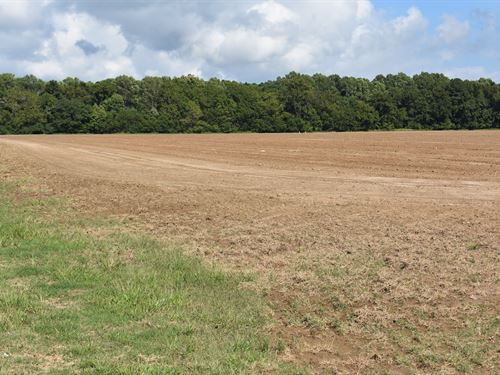 Major Virginia Land Auction : Tasley : Accomack County : Virginia
