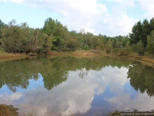 Great Recreational Property : Crystal Springs : Copiah County : Mississippi