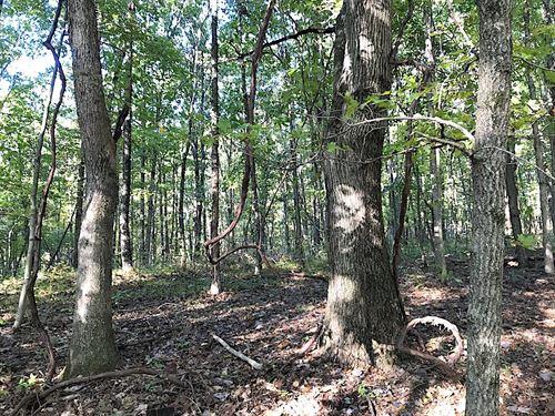 Spears Hill Rd, 5 Acres : Stockport : Washington County : Ohio