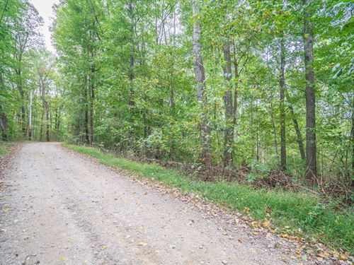 Trillium Way, 7 Acres : Rockbridge : Hocking County : Ohio