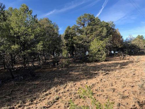 Great Get Away Property Located : El Vado : Rio Arriba County : New Mexico