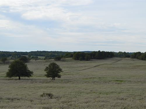 438 Acre Combination Ranch Auction : Cement : Caddo County : Oklahoma