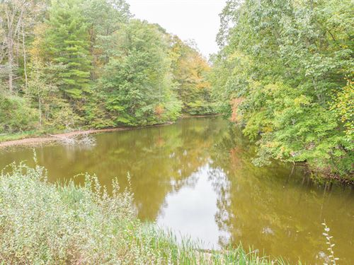 Deerberry Ln, 8 Acres : Rockbridge : Hocking County : Ohio