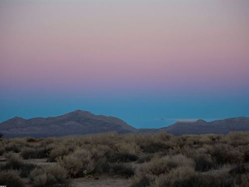 10 Ac Desert Paradise : Kramer Junction : San Bernardino County : California