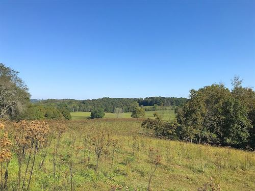 Four Mile Rd, 29 Acres : Jackson : Ohio