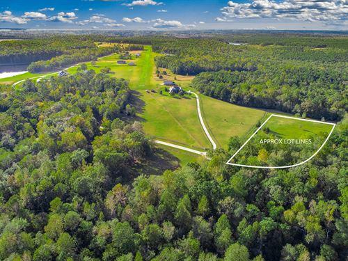 4.84 Acres In Equestrian/Airstrip C : Newborn : Morgan County : Georgia