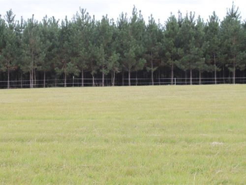 10 Acres In Lamar County In Sumrall : Sumrall : Lamar County : Mississippi