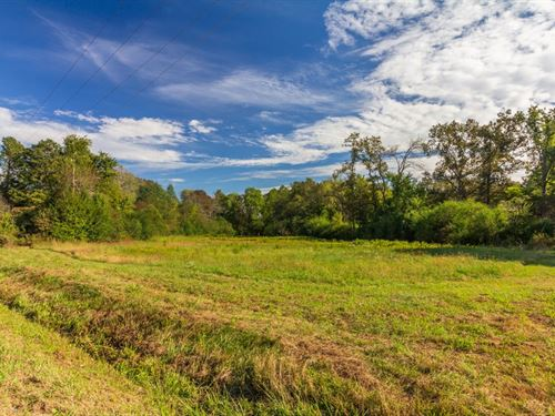 Almost 60 Acres Corner Hwy 45 : Selmer : McNairy County : Tennessee