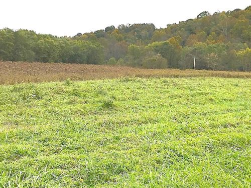 Tr 346, 113 Acres : Middleport : Meigs County : Ohio