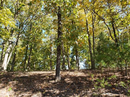 3/4 Acre Lot In Cherokee Lake Sub : Mooresburg : Hawkins County : Tennessee