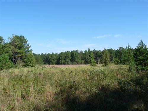 Berry Bottom : Eastover : Richland County : South Carolina
