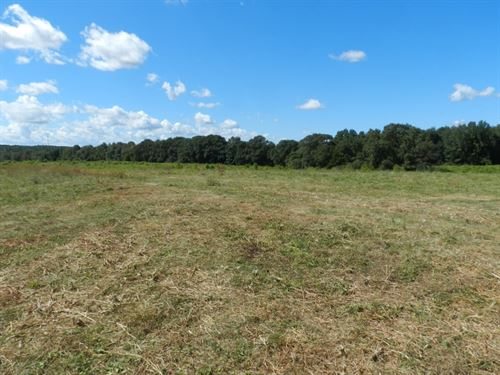 132 Ac Farm-Development Potential : McDonough : Henry County : Georgia