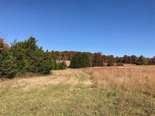 95 Acres Ready For Hunting, Cattle : Cadet : Washington County : Missouri