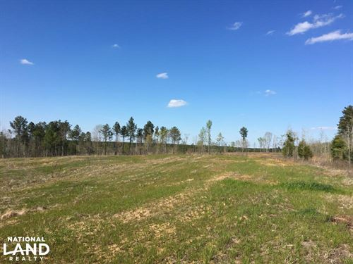 Waterloo Open Land With Creeks & Wo : Waterloo : Laurens County : South Carolina