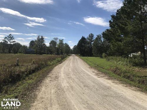 Loop Road Hunting And Timber Tract : Bolton : Columbus County : North Carolina
