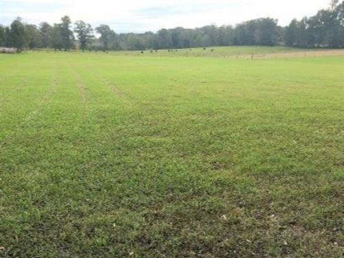 12 Acres Of Pasture Land In Hinds : Terry : Hinds County : Mississippi