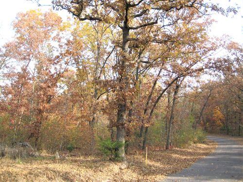 Land Near Lake Ozarks, 14 Acres : Gravois Mills : Morgan County : Missouri