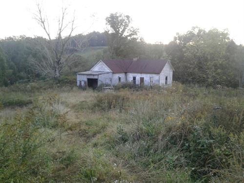 Old Horse Farm Home Site, 30 Acres : Gandeeville : Roane County : West Virginia
