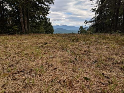 Spacious 5 Ac In Asheville Nc : Asheville : Buncombe County : North Carolina