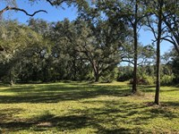 2/1 Mh On 14.3 Acres 776641 : Old Town : Dixie County : Florida