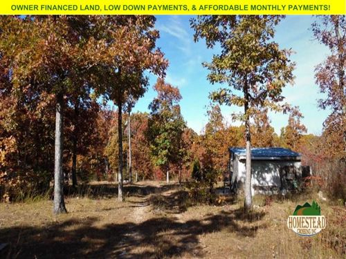 Homestead Property With Small Cabin : Mountain Grove : Texas County : Missouri