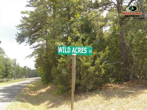 2.31 Acres / 1 Block From Greers : Drasco : Cleburne County : Arkansas
