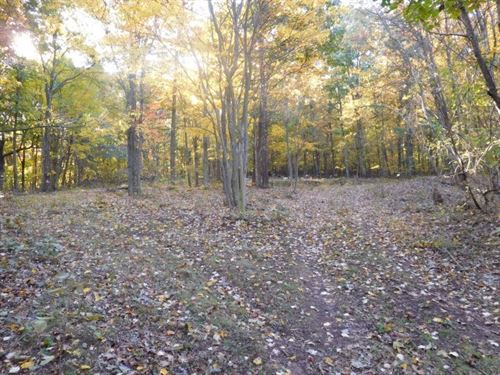 5.077 Acres in Augusta, WV : Augusta : Hampshire County : West Virginia