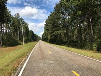 6 Acre Wooded Home Sites : Griffin : Spalding County : Georgia