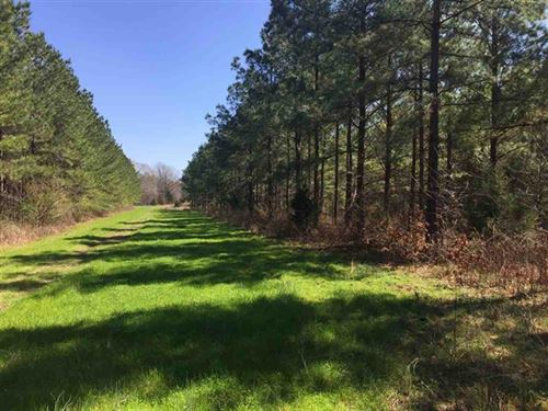 247 Acre Timber Investment : Raymond : Hinds County : Mississippi