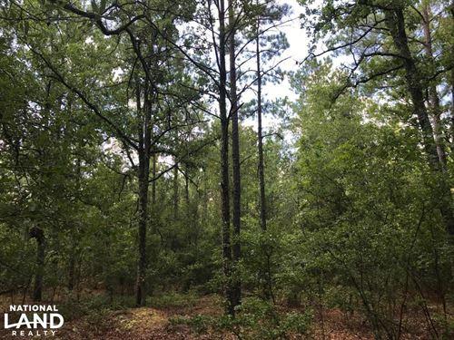 Holley Pond Rural Home Site : Batesburg : Aiken County : South Carolina