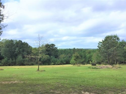 9.5 Acres In Copiah County In Cryst : Crystal Springs : Copiah County : Mississippi