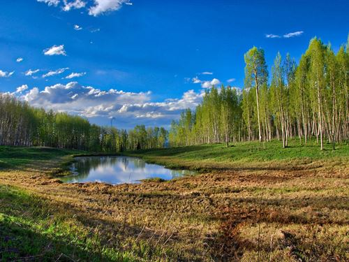 Colorado Mountain Property Water : Montrose : Colorado