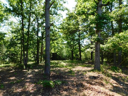 Land TN Shiloh To Build Cabin Home : Adamsville : Hardin County : Tennessee