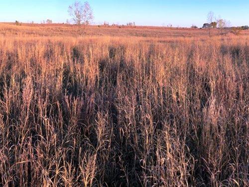 Mahaska County Farm For Sale : Oskaloosa : Mahaska County : Iowa