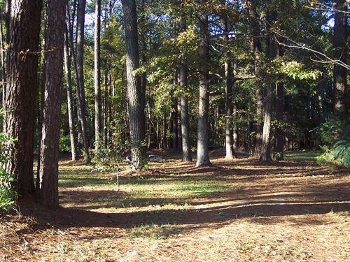 Wooded Residential Lot Hertford : Ahoskie : Hertford County : North Carolina