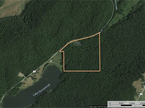 39 Acres Joining Camp Sumatanga : Gallant : Saint Clair County : Alabama