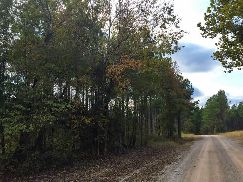 Tract 1538 East : Adamsville : McNairy County : Tennessee