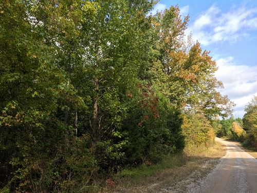 Tract 1538 West- Sealed Bid Land : Adamsville : McNairy County : Tennessee