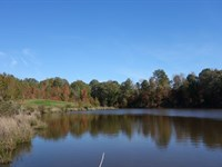 Awesome Recreational Tract & Pond : Lancaster : Lancaster County : South Carolina