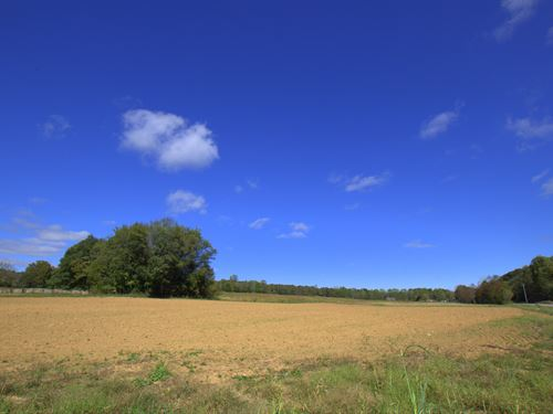 114 Acres Of Potential : Cumberland Furnace : Dickson County : Tennessee