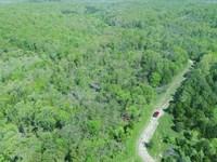 6 Acres With Pond And Power : Drury : Douglas County : Missouri