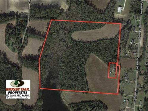 45.89 Acres of Farm And Timber Lan : Whiteville : Columbus County : North Carolina