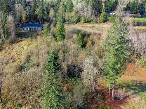 Beautiful Recreational Acreage : Mossyrock : Lewis County : Washington