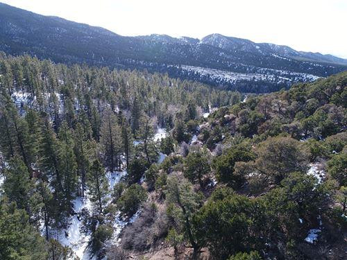 5Ac In Colorado, Owner Financing : Fort Garland : Costilla County : Colorado