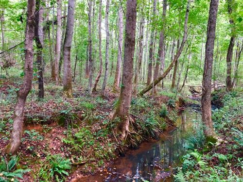 Cheap Hunting Land In Redbone : Redbone : Monroe County : Georgia