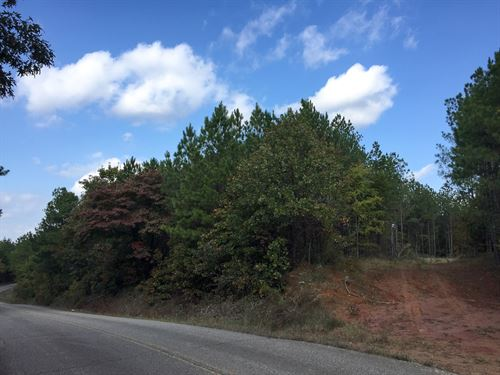 Tract 1594 East : Finger : McNairy County : Tennessee
