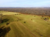 Acreage Close To Town : Blue River : Grant County : Wisconsin