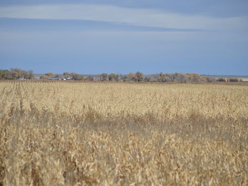 Irrigated Farm For Sale : Las Animas : Bent County : Colorado