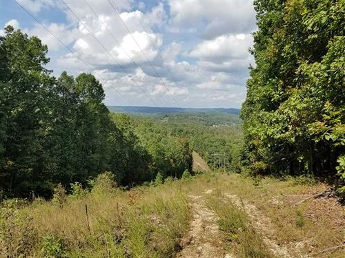 160 Acres Joining State Conservati : Eminence : Shannon County : Missouri